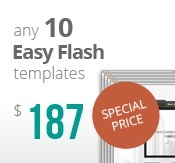 10 easy flash templates bundle package