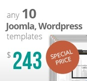 10 Joomla & Wordpress templates bundle package