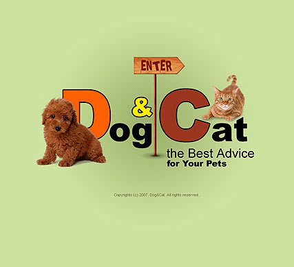 Pet products, Flash template