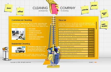 Cleaning co. | Flash template | ID:300110059