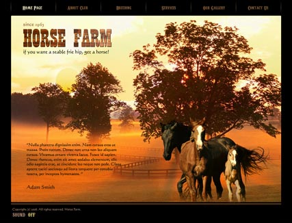 Horse Farm, Easy flash template