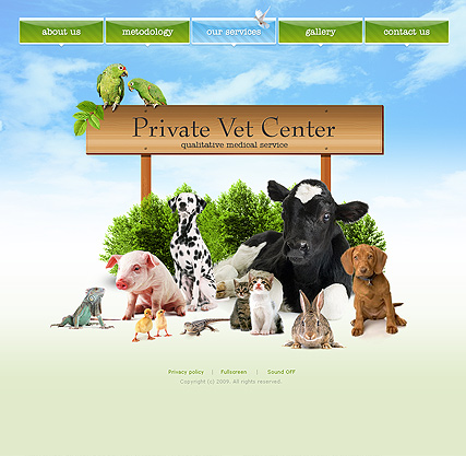 Private vet center, Easy flash template