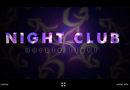 Name: Night Club - Type: Flash intro template - Item number:300110492