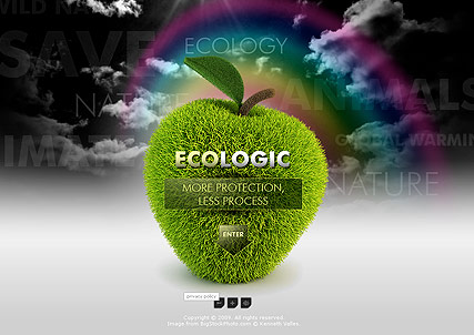 Ecologic Co., Easy flash template
