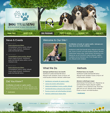 Dog Training, Website template