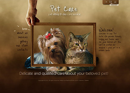 Name: Pet Care - Type: Easy flash templates - Item number:300110835