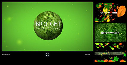 Name: Biolight - Type: Flash intro template - Item number:300110896