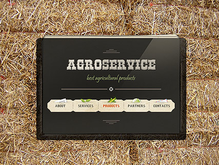 Agro Service, Easy flash template