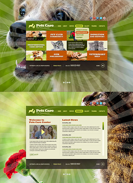 Pet Care Service, HTML5 template