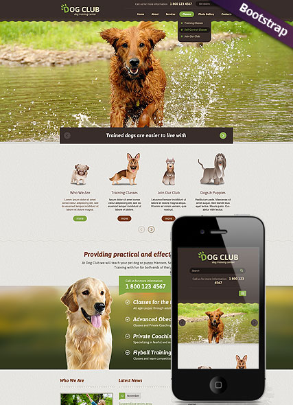 Dog Club, Bootstrap template