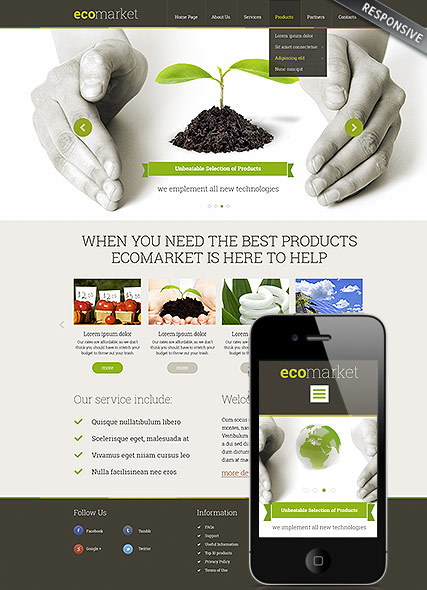Ecology Products, Wordpress template