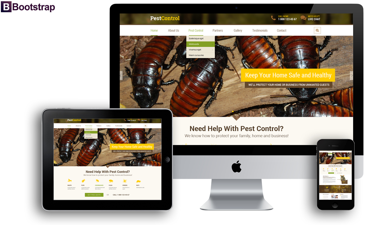 Pest control, Bootstrap template