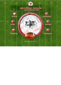 USA football Flash template