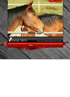 Horse farm VideoAdmin flash