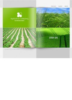 Agriculture CO. Easy flash template