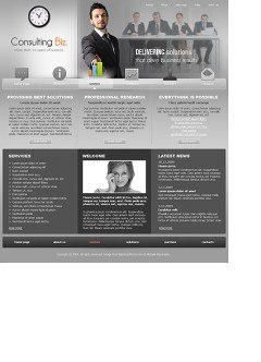 Consulting.Biz Website template