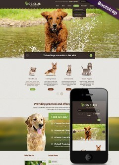 Dog Club Bootstrap template