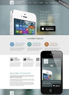 Application developer Wordpress template