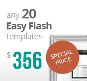 20 easy flash templates bundle package