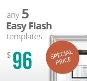 5 easy flash templates bundle package